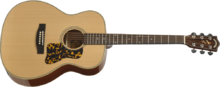 Headway Guitars HF-590AS NA
