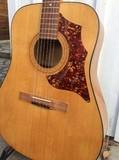 Hofner Guitars 489 E