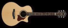 Ibanez AE500