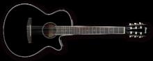 Ibanez AEG10NII-BK-3R-01