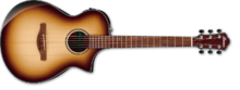 Ibanez AEWC300