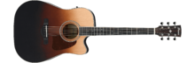 Ibanez AW80CE