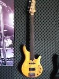 Ibanez RDGR500