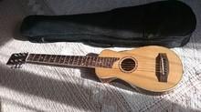 Johnson Guitars JTR-1