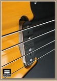 Lindy Fralin '51 P-bass Split coil