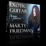 Loop Artists Exotic Guitar - Marty Friedman