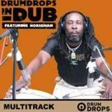 Loopmasters Drumdrops in Dub Multitrack