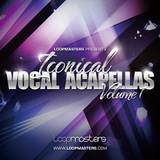 Loopmasters ICONICAL VOCAL ACAPELLAS