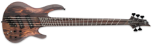 LTD B-1005SE Multi-scale