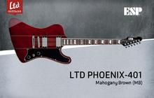 LTD Phoenix-401 - Mahogany Brown