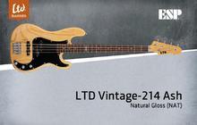 LTD Vintage-214 Ash / Rosewood