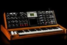 Moog Music MiniMoog Voyager Lunar Cherry