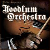 Motion Samples Hoodlum Orchestra