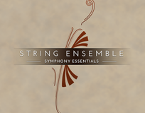Native Instruments Essentials - String Ensemble