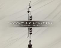 Native Instruments Essentials - Woodwind Ensemble