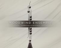 Native Instruments Essentials - Woodwind Ensemble