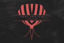 Native Instruments Percussion