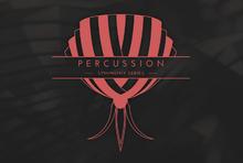 Native Instruments Percussion