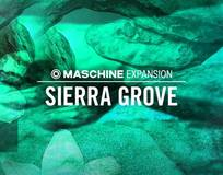 Native Instruments Sierra Grove