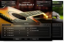 Native Instruments Strummed Acoustic 2