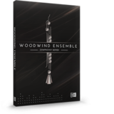 Native Instruments Woodwind Ensemble
