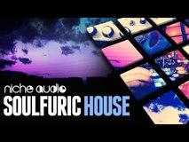 Niche Audio Soulphuric House