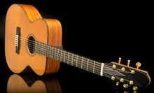 NK Forster Guitars Model C-Skadv