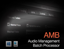 Nugen Audio AMB - Audio Management Batch Processor