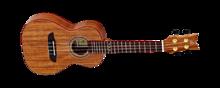 Ortega RUACA-CC