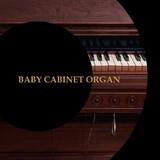 Precision Sound Baby Cabinet Organ