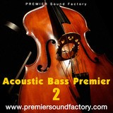 Premier Sound Factory Acoustic Bass Premier 2