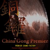 Premier Sound Factory China Gong Premier