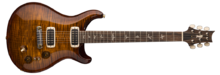 PRS Experience PRS 2018 Paul's Guitar