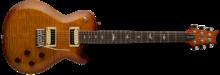 PRS SE Mark Tremonti Custom [2017-Current]