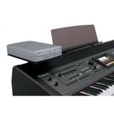 Roland DST-RK500