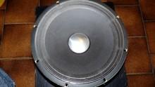 Roland Heavy Duty Transducer