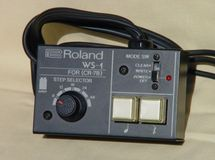 Roland ws-1/ts-1