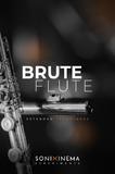 Best virtual flutes - Audiofanzine
