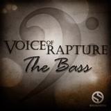 Soundiron Voice of Rapture: The Bass