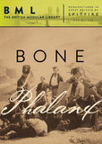 Spitfire Audio Bone Phalanx