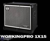 SWR WorkingPro 1x15