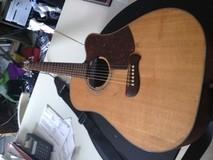 Tacoma Guitars dm 14