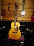 Tacoma Guitars PK 30