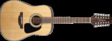 Takamine GD30-12