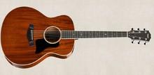 Taylor 528