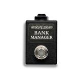TheGigRig Bank Manager