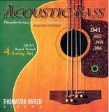 Thomastik Infeld Acoustic Bass  Strings