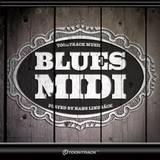 Toontrack Blues MIDI