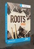 Toontrack Roots Sticks Presets - Blues