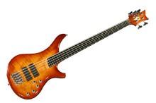 Vigier Passion IV 5 Strings